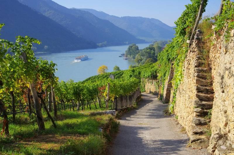Wycieczka winnica austria