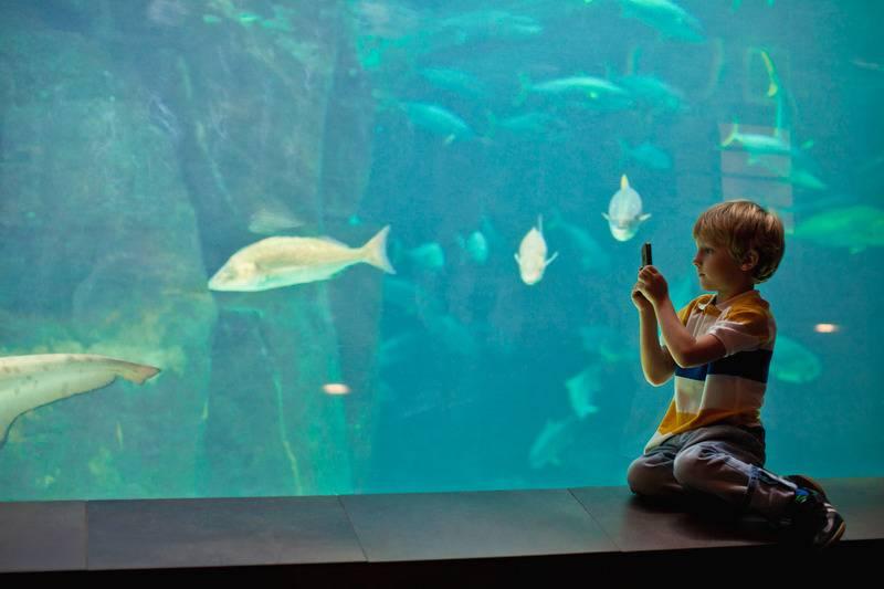 Zwiedzanie Oceanarium Stralsund