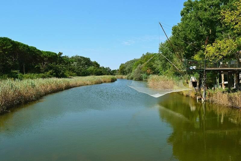 Delta Rzeki Pad
