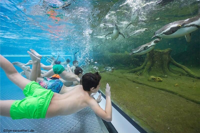 Spreewelten Bad w Lubbenau